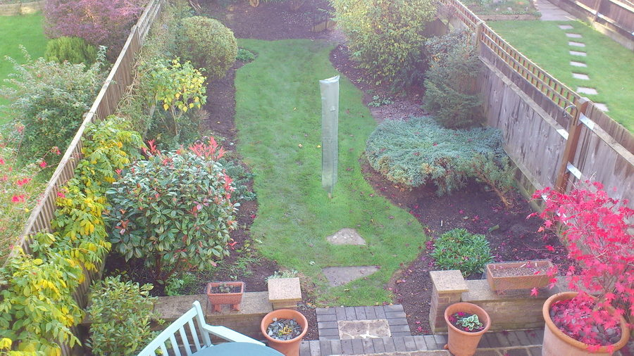 Planting designs were part of the redesign of this mature for Garden redesign