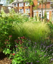 Planting in Care home garden