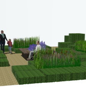 Bespoke gardens of cubes of Box (Buxus)