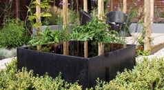 Contemporary Garden design West London