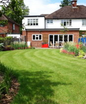 Garden planting design for Ickenham: Sweeping lawn and lots of colour is now in the garden