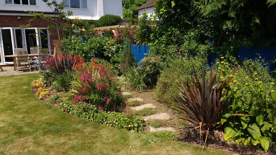 Garden Planting advice for clients who like Colour