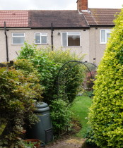 mature garden in Ruislip needs Planting designs