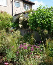 Planting designs - Seed heads and colour