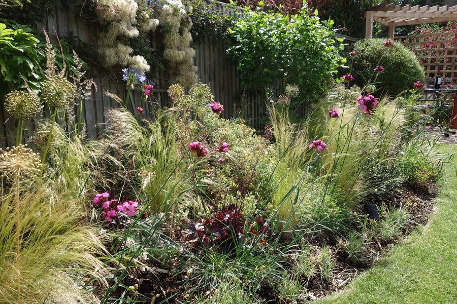 Planting designs - Rhoda Maw