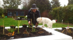Planting in Ickenham with the help of the client's dog
