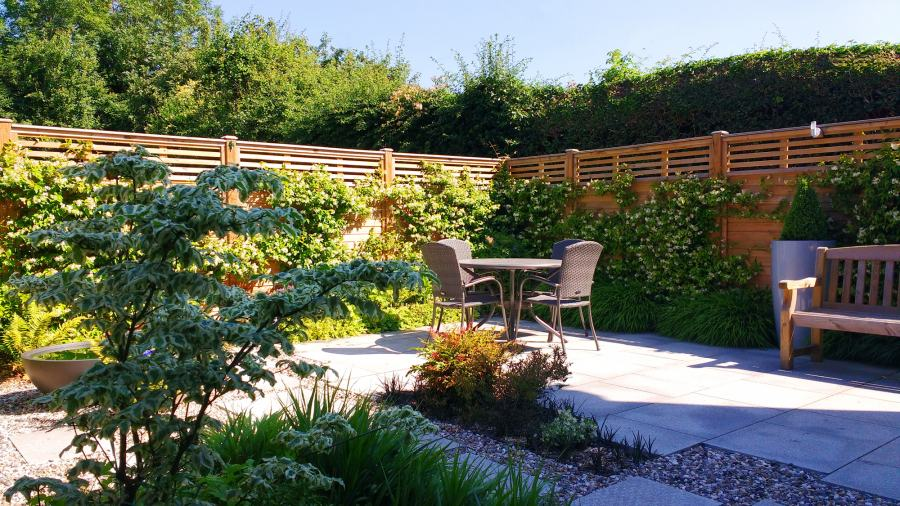 Modern Garden Ruislip - after a few years