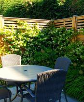Modern Garden Ruislip with Trachleospermum