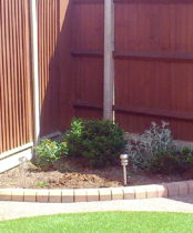A tiny border of a garden in Northolt in need of colour and interest