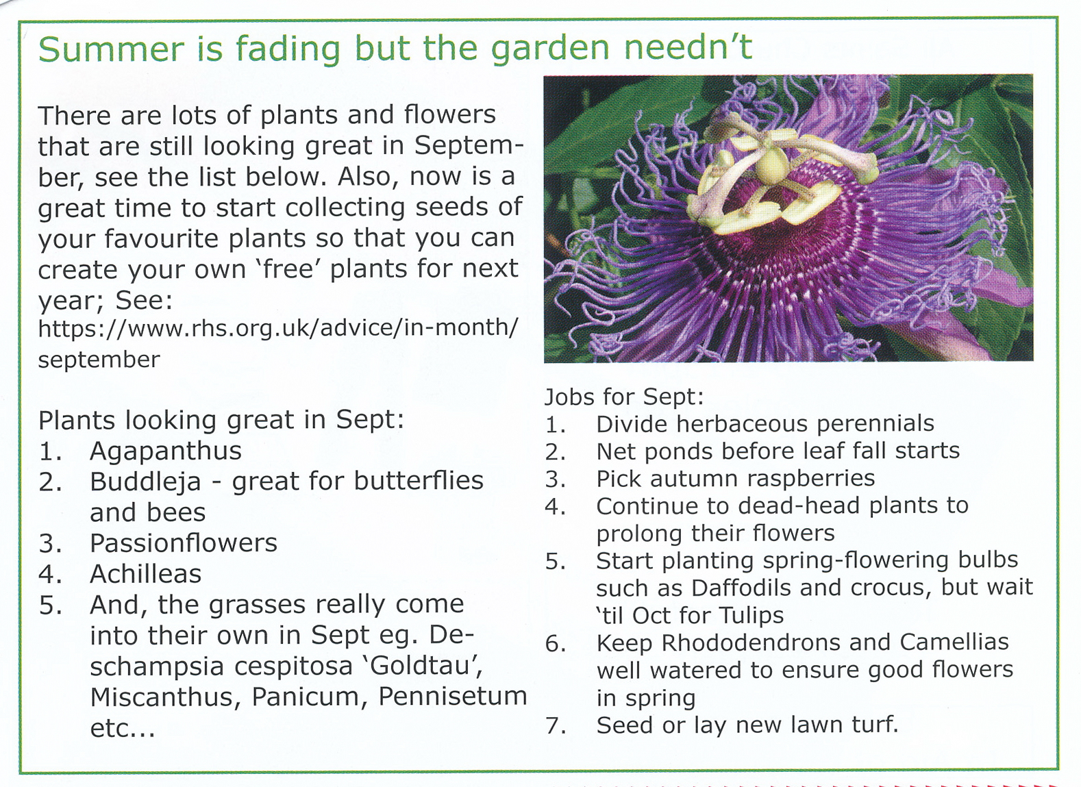 Good plants for September