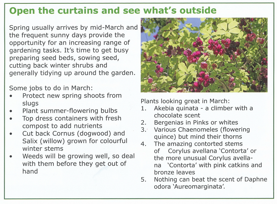 Best plants for March