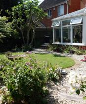 Small back garden with lovely cottage garden plants