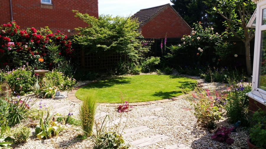 Small back garden with cottage planting