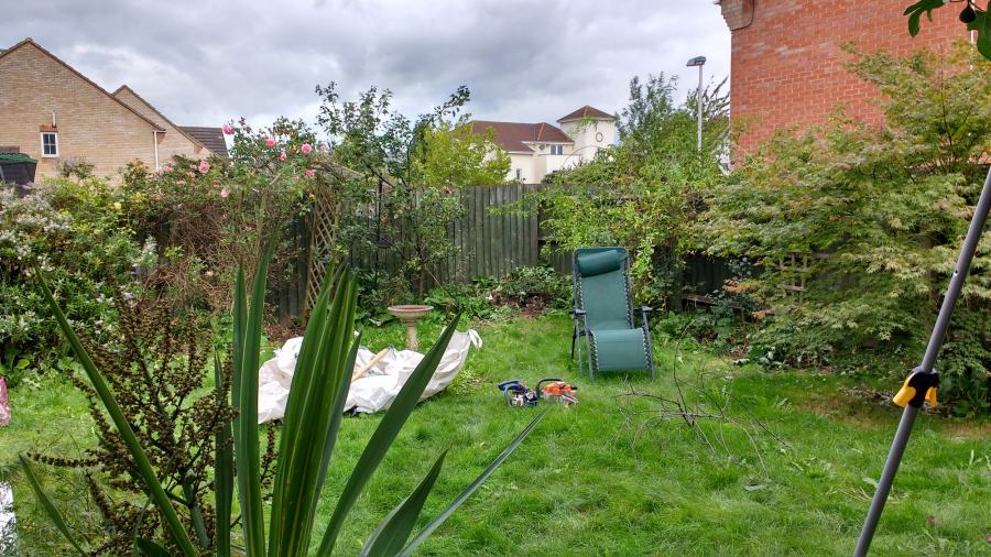 Small back garden in need of a makeover by Rhoda Maw Garden Design