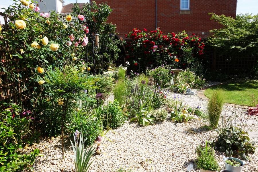 small back garden redesigned by Rhoda Maw Garden design with Cottage Garden plants and gravel