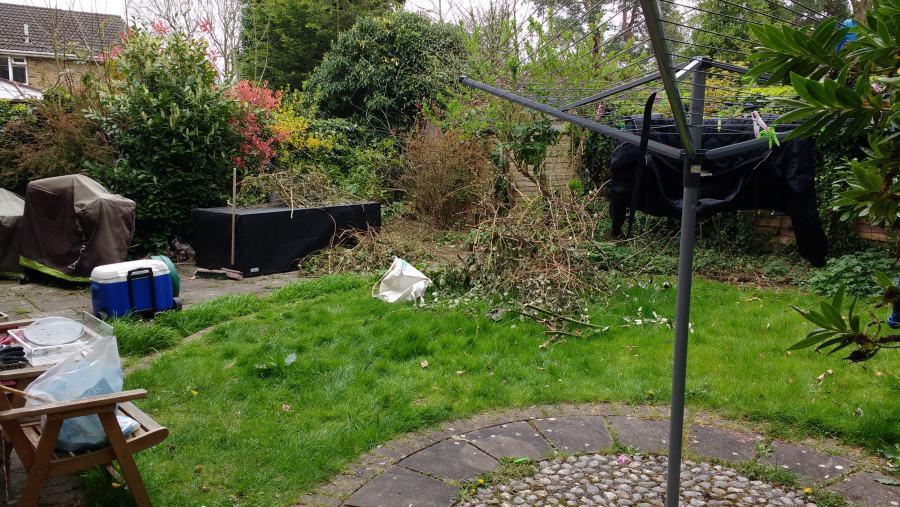 Minimalist Garden needs redesign