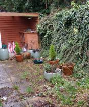 client wants a Minimalist Garden