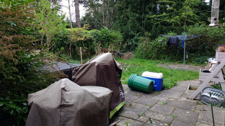 Minimalist Garden in chaos