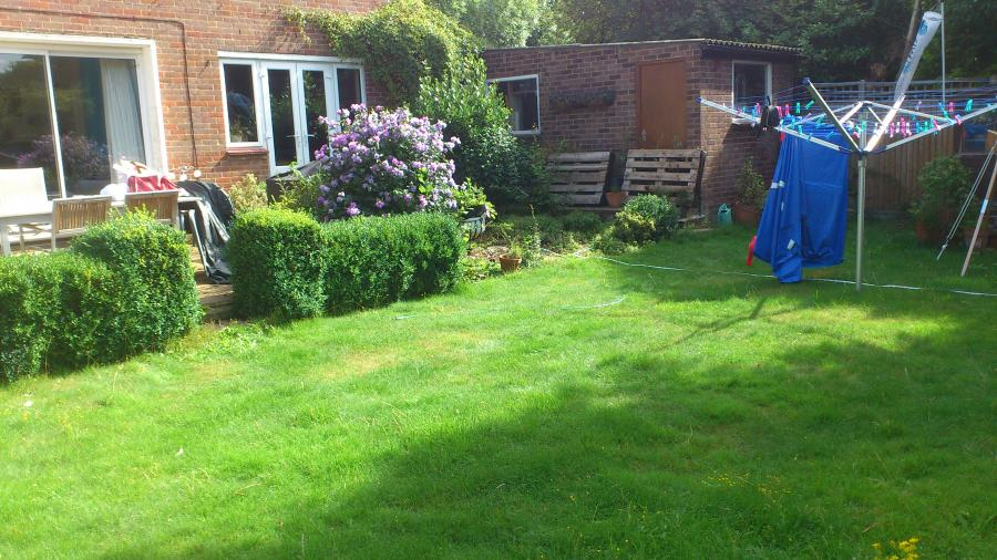 wide shallow garden in need of redesign needs makeover