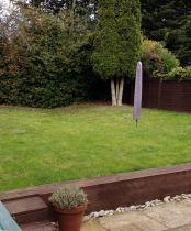 Medium garden needing design ideas