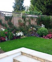 Medium garden design ideas - November planting