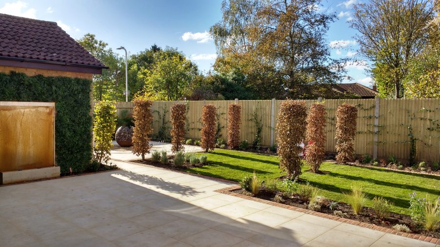 Contemporary Landscaping in the Autumn